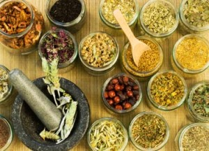 Turnkey herbal product development,herbal clinical trials india