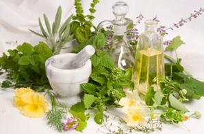 herbal+beauty+products